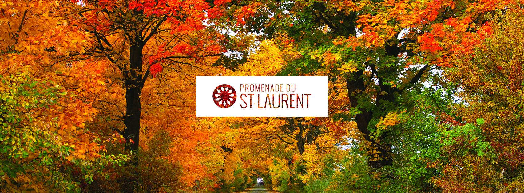 PromenadeStLaurent_bandeauFacebook_automne